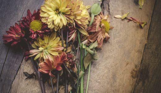 月組「エリザベート」感想①自然と在る「死」珠城トート・感情移入した愛希シシィ・優しすぎる美弥フランツについて。